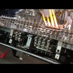 Kinesisk ampul formning påfyldning tætningsmaskine